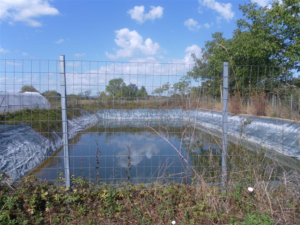 Laghi raccolta acqua serendipity biolaghi arezzo for Laghetti prefabbricati